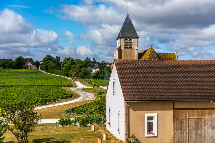 wine tasting and beautiful scenery at Jean-Marc Brocard Estate in Chablis, France.