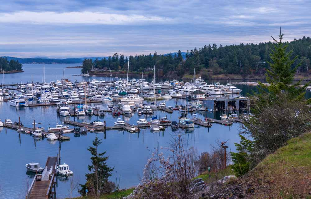 a press trip request to San Juan island led us to beautiful Roche Harbor