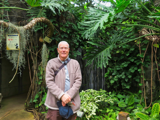 Rey Waters standing in a tropical greenhouse